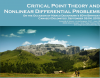 Critical Point Theory and Nonlinear Differential Problems